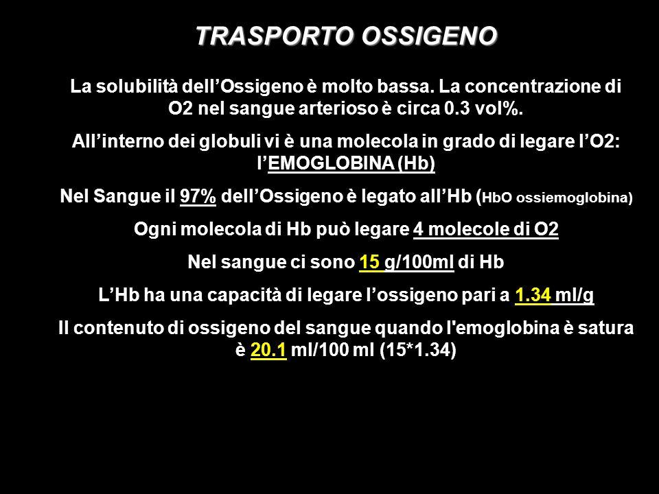 CURVA DI DISSOCIAZIONE dellHbO A : PO2 = 100 mm/Hg saturazione Hb = 97% O2 legato = 19.4 vol% B : PO2 = 40 mm/Hg saturazione Hb = 75% O2 legato = 14.4 vol% 5ml differenza artero-venosa = 5 vol% in questo caso ad ogni passaggio nei capillari 100ml di sangue cedono 5ml di ossigeno ai tessuti.