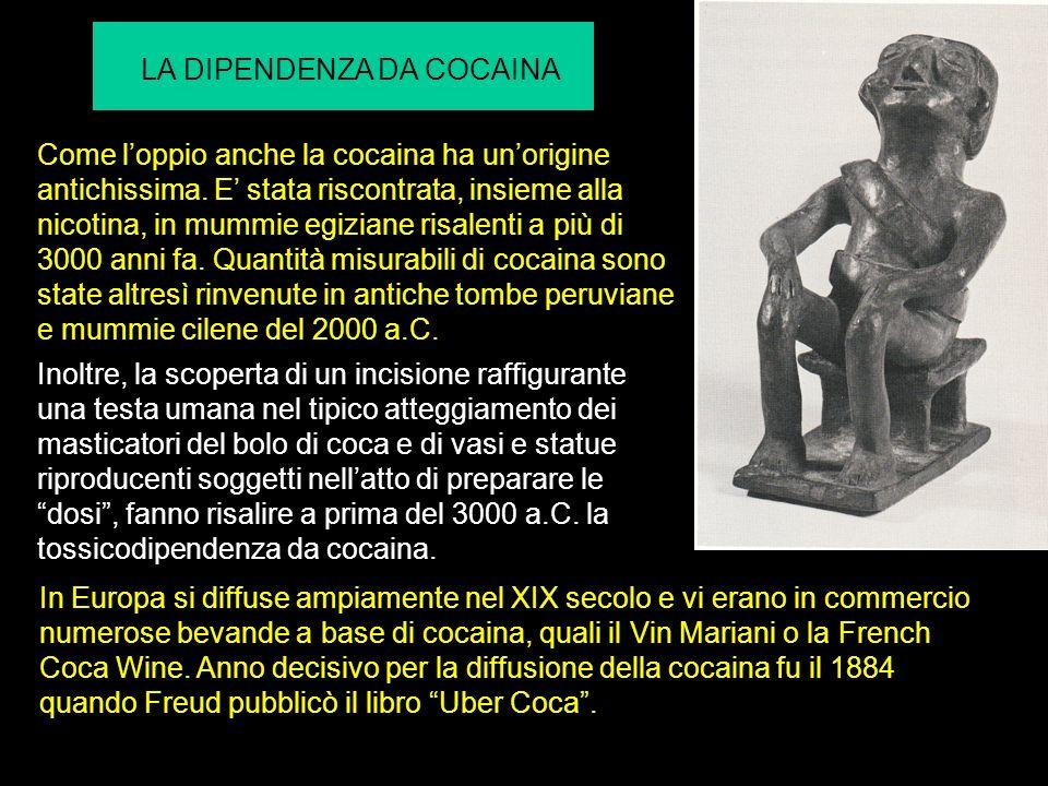 Come loppio anche la cocaina ha unorigine antichissima.