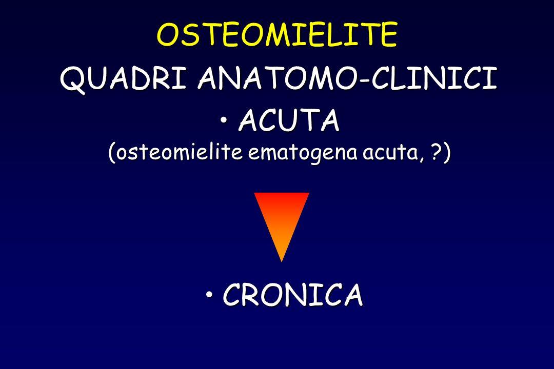 OSTEOMIELITE ACUTAACUTA (osteomielite ematogena acuta, ?) QUADRI ANATOMO-CLINICI CRONICACRONICA