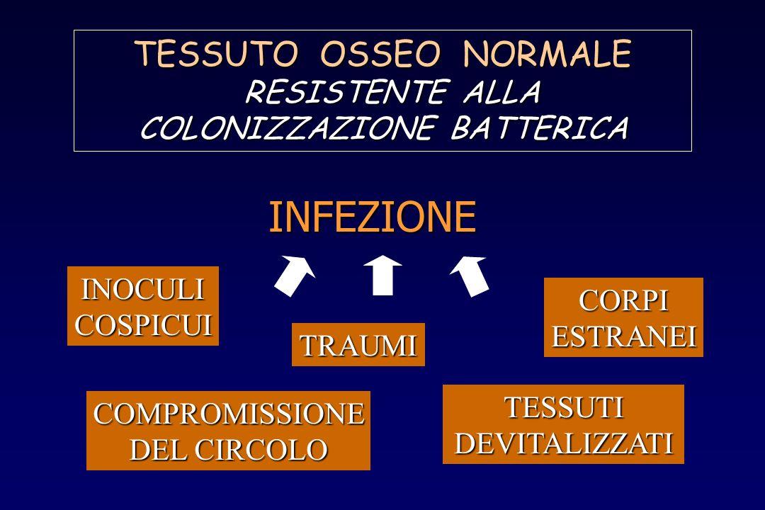 TESSUTO OSSEO NORMALE RESISTENTE ALLA RESISTENTE ALLA COLONIZZAZIONE BATTERICA INFEZIONE INOCULICOSPICUI TRAUMI CORPIESTRANEI COMPROMISSIONE DEL CIRCO