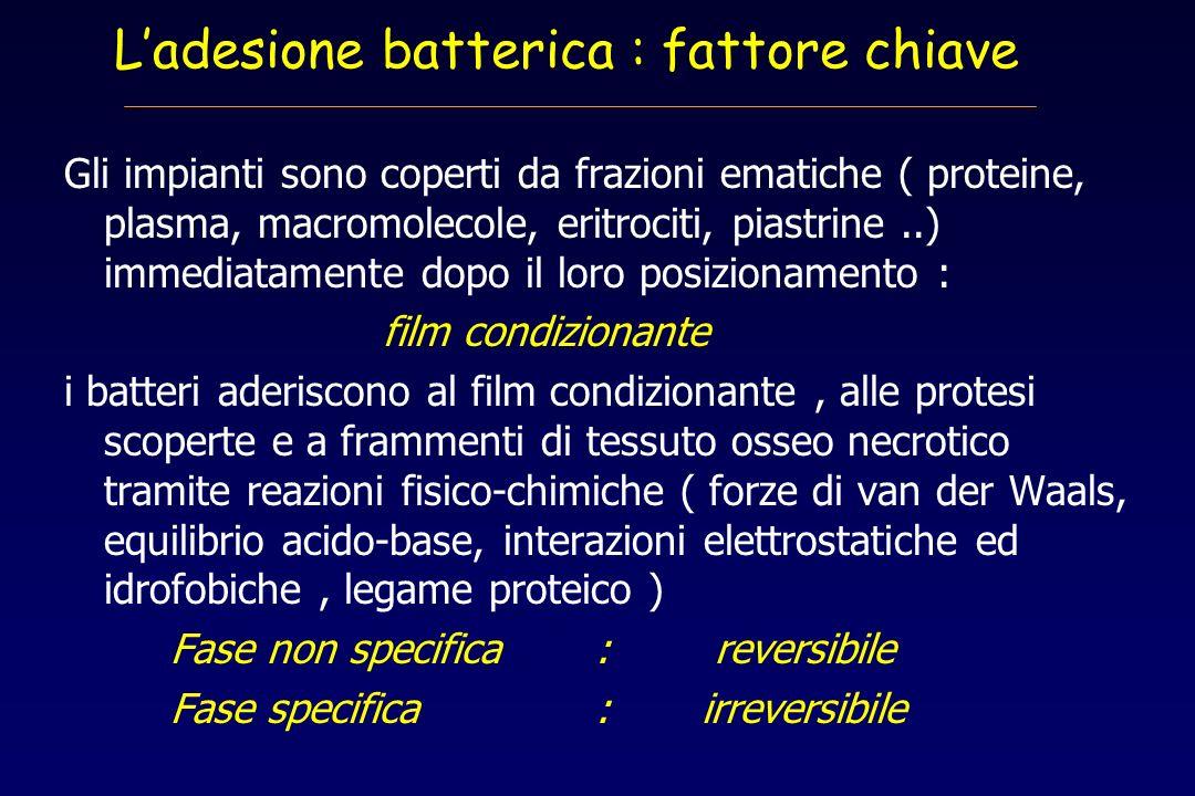 Ladesione batterica : fattore chiave Gli impianti sono coperti da frazioni ematiche ( proteine, plasma, macromolecole, eritrociti, piastrine..) immedi