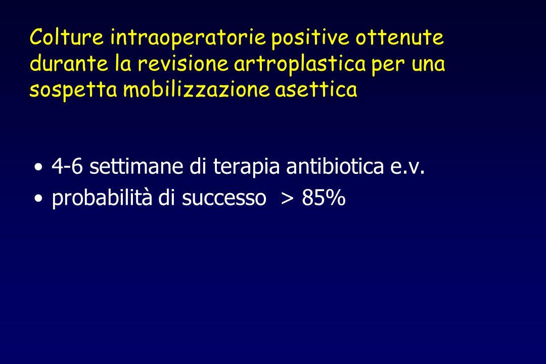 Colture intraoperatorie positive ottenute durante la revisione artroplastica per una sospetta mobilizzazione asettica 4-6 settimane di terapia antibio