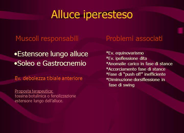 Alluce iperesteso Muscoli responsabiliProblemi associati Estensore lungo alluce Soleo e Gastrocnemio *Ev.