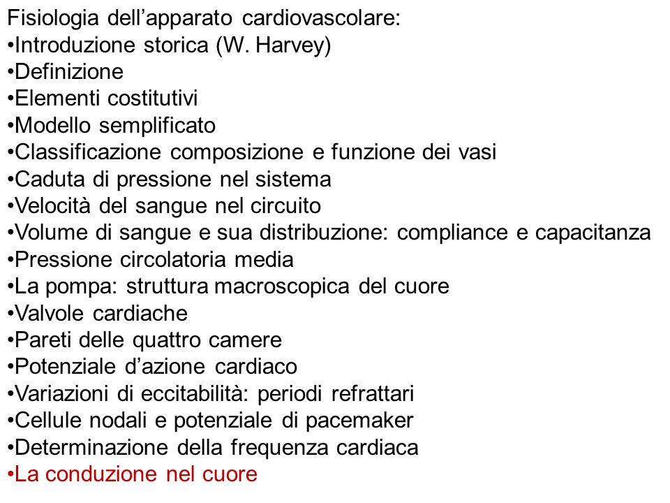 Fisiologia dellapparato cardiovascolare: Introduzione storica (W. Harvey) Definizione Elementi costitutivi Modello semplificato Classificazione compos