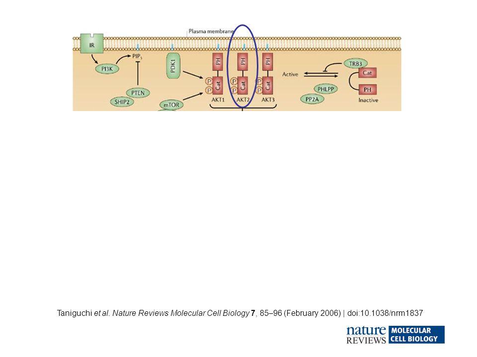 Taniguchi et al. Nature Reviews Molecular Cell Biology 7, 85–96 (February 2006) | doi:10.1038/nrm1837 1 2 3 4