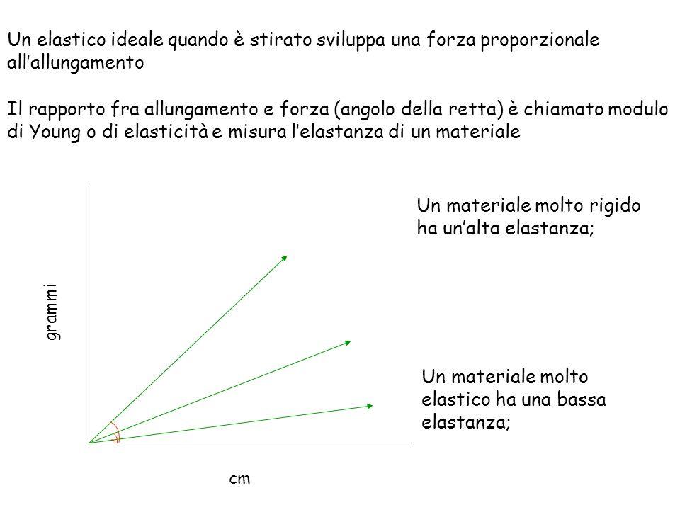 cm grammi Un elastico ideale quando è stirato sviluppa una forza proporzionale allallungamento Il rapporto fra allungamento e forza (angolo della rett