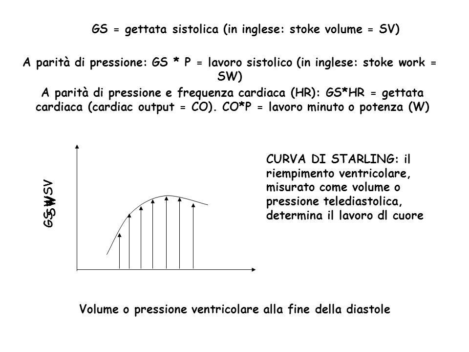W GS = gettata sistolica (in inglese: stoke volume = SV) Volume o pressione ventricolare alla fine della diastole A parità di pressione: GS * P = lavo