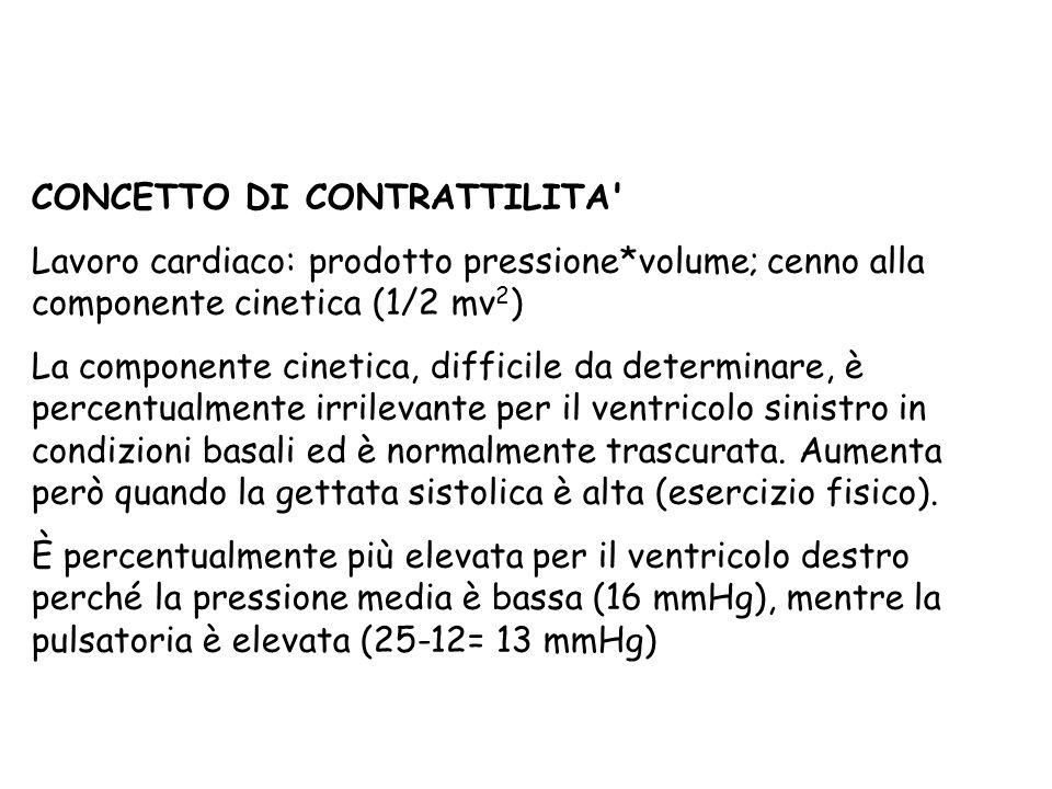 CONCETTO DI CONTRATTILITA' Lavoro cardiaco: prodotto pressione*volume; cenno alla componente cinetica (1/2 mv 2 ) La componente cinetica, difficile da