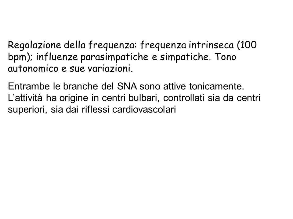 Regolazione della frequenza: frequenza intrinseca (100 bpm); influenze parasimpatiche e simpatiche. Tono autonomico e sue variazioni. Entrambe le bran