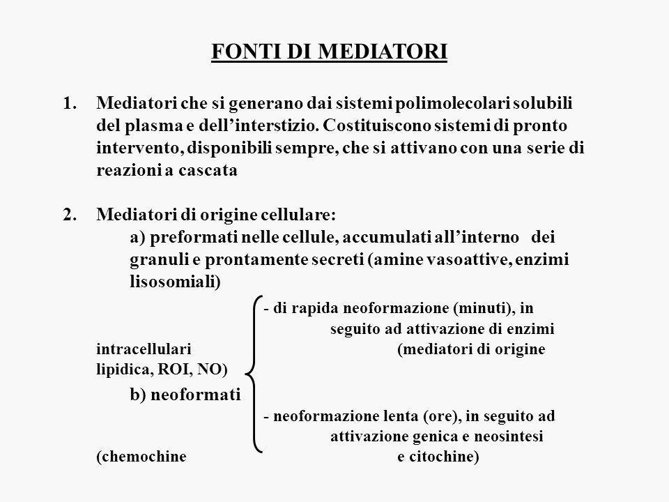 RIDONDANZA (più mediatori con la stessa funzione) PLEIOTROPISMO (più risposte promosse dallo stesso mediatore) ATTIVAZIONE SEQUENZIALE (mediatori che promuovono la formazione di altri mediatori con la stessa funzione) (mediatori che promuovono la formazione di altri mediatori responsabili di funzioni diverse) GARANZIA che un determinato fenomeno avvenga AMPLIFICAZIONE della risposta MANTENIMENTO della risposta PROGRESSIONE verso le fasi successive