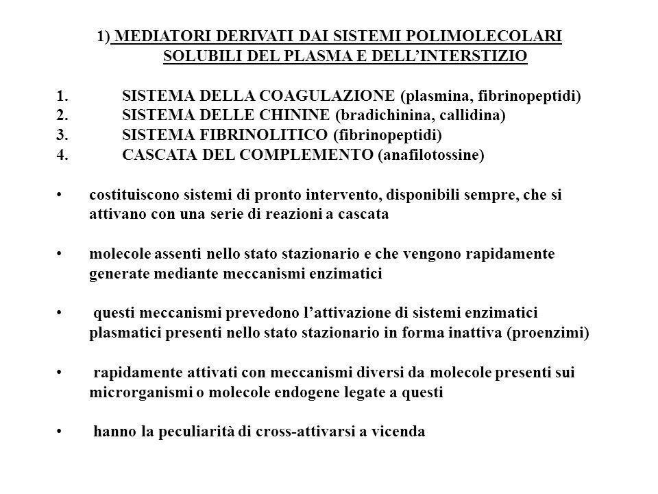 1) MEDIATORI DERIVATI DAI SISTEMI POLIMOLECOLARI SOLUBILI DEL PLASMA E DELLINTERSTIZIO 1.SISTEMA DELLA COAGULAZIONE (plasmina, fibrinopeptidi) 2.SISTE