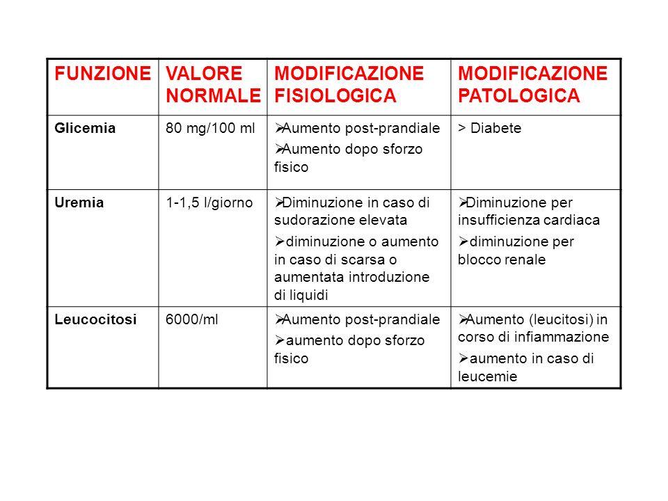 FUNZIONEVALORE NORMALE MODIFICAZIONE FISIOLOGICA MODIFICAZIONE PATOLOGICA Glicemia80 mg/100 ml Aumento post-prandiale Aumento dopo sforzo fisico > Dia