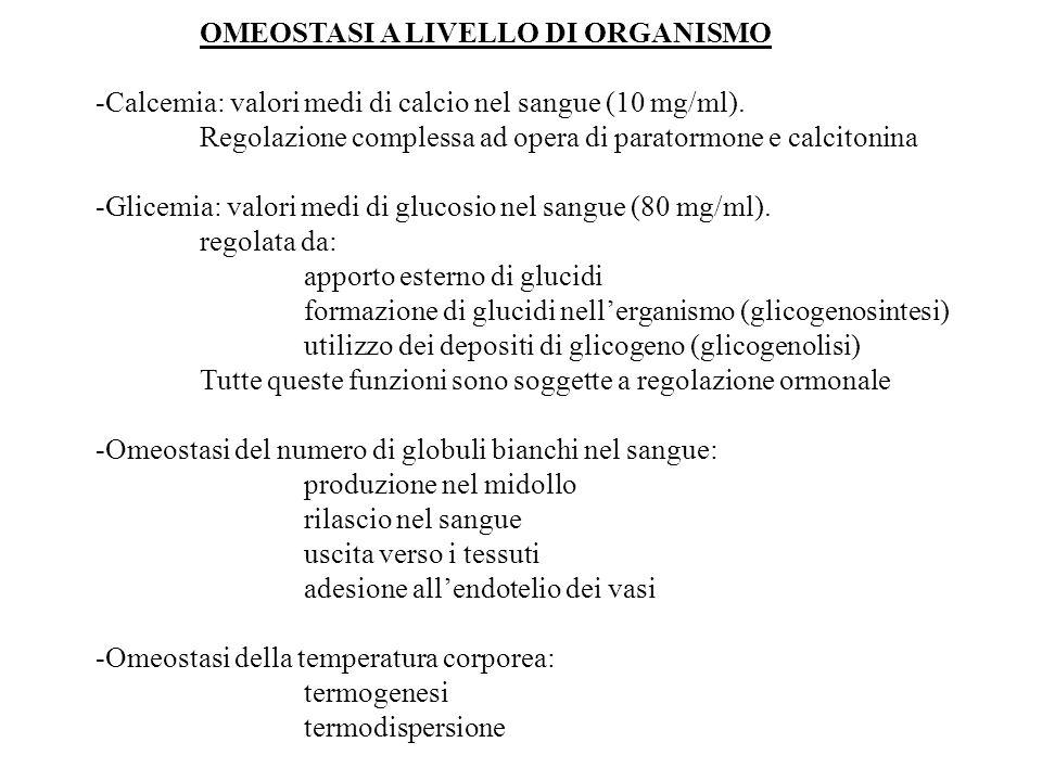 OMEOSTASI A LIVELLO DI ORGANISMO -Calcemia: valori medi di calcio nel sangue (10 mg/ml). Regolazione complessa ad opera di paratormone e calcitonina -
