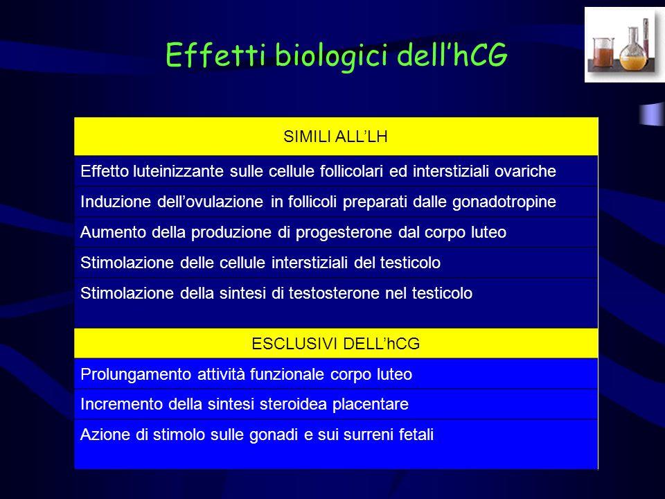 Effetti biologici dellhCG SIMILI ALLLH Effetto luteinizzante sulle cellule follicolari ed interstiziali ovariche Induzione dellovulazione in follicoli preparati dalle gonadotropine Aumento della produzione di progesterone dal corpo luteo Stimolazione delle cellule interstiziali del testicolo Stimolazione della sintesi di testosterone nel testicolo ESCLUSIVI DELLhCG Prolungamento attività funzionale corpo luteo Incremento della sintesi steroidea placentare Azione di stimolo sulle gonadi e sui surreni fetali