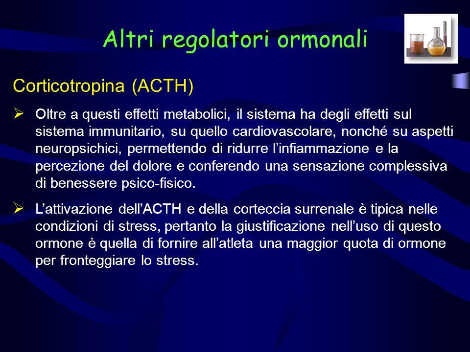 Corticotropina (ACTH) Questi effetti sono utili nel breve termine ma assumono una connotazione negativa sul lungo termine, dato lostacolo ai fenomeni di riparazione, il consumo di proteine utilizzate a fini energetici, la perdita di muscolo e di massa ossea, le alterazioni metaboliche, laumento dei valori di pressione arteriosa e la soppressione del sistema immunitario che conseguono ad un eccesso cronico di glucocorticoidi.