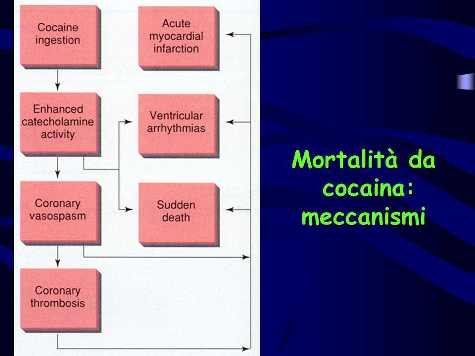 Mortalità da cocaina: meccanismi