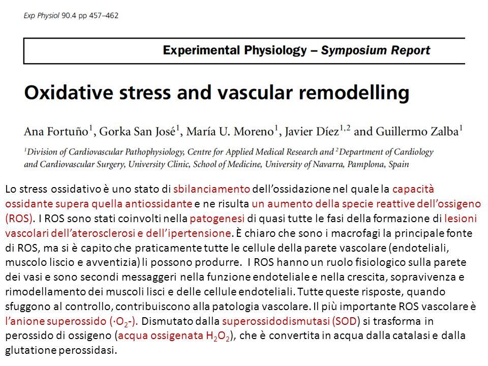 Lo stress ossidativo è uno stato di sbilanciamento dellossidazione nel quale la capacità ossidante supera quella antiossidante e ne risulta un aumento
