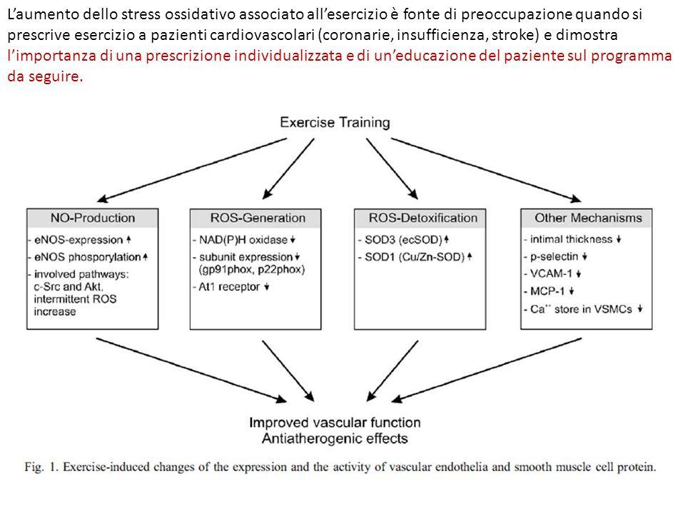 Laumento dello stress ossidativo associato allesercizio è fonte di preoccupazione quando si prescrive esercizio a pazienti cardiovascolari (coronarie,