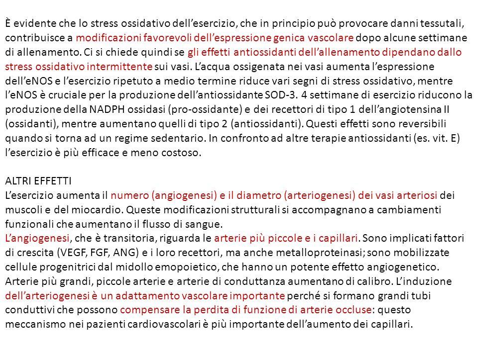 È evidente che lo stress ossidativo dellesercizio, che in principio può provocare danni tessutali, contribuisce a modificazioni favorevoli dellespress