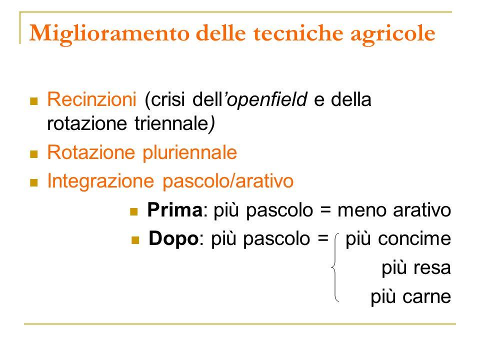 Miglioramento delle tecniche agricole Recinzioni (crisi dellopenfield e della rotazione triennale) Rotazione pluriennale Integrazione pascolo/arativo