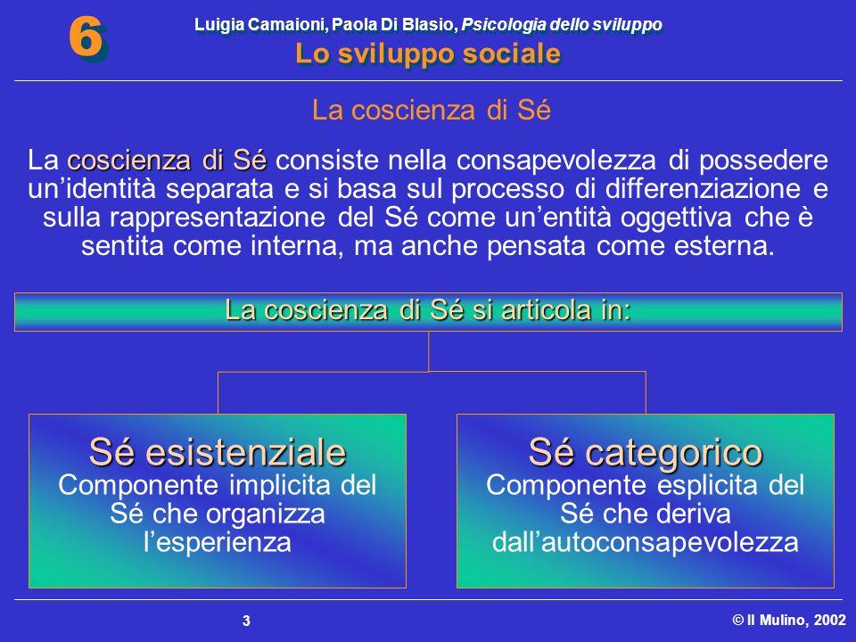 Luigia Camaioni, Paola Di Blasio, Psicologia dello sviluppo Lo sviluppo sociale © Il Mulino, 2002 6 6 3 La coscienza di Sé coscienza di Sé La coscienz