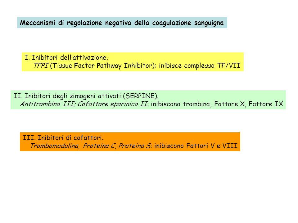 Meccanismi di regolazione negativa della coagulazione sanguigna I. Inibitori dellattivazione. TFPI (Tissue Factor Pathway Inhibitor): inibisce comples