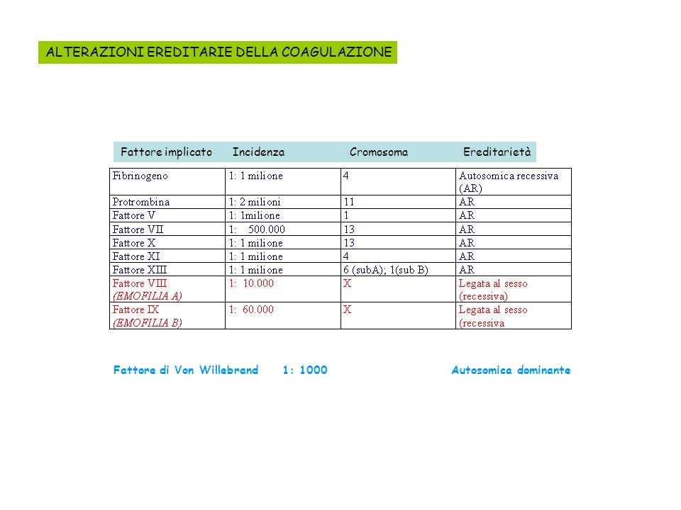 ALTERAZIONI EREDITARIE DELLA COAGULAZIONE Fattore implicato Incidenza Cromosoma Ereditarietà Fattore di Von Willebrand 1: 1000 Autosomica dominante
