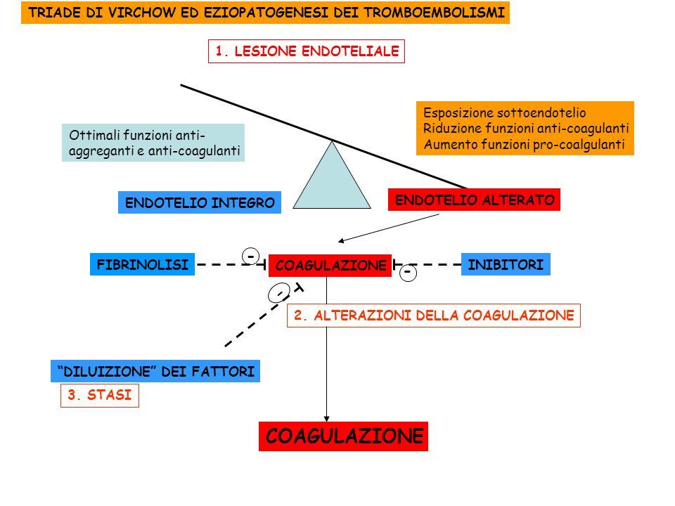 - ENDOTELIO INTEGRO ENDOTELIO ALTERATO Esposizione sottoendotelio Riduzione funzioni anti-coagulanti Aumento funzioni pro-coalgulanti Ottimali funzion