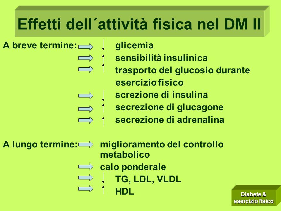 Effetti dell´attività fisica nel DM II A breve termine: glicemia sensibilità insulinica trasporto del glucosio durante esercizio fisico screzione di i