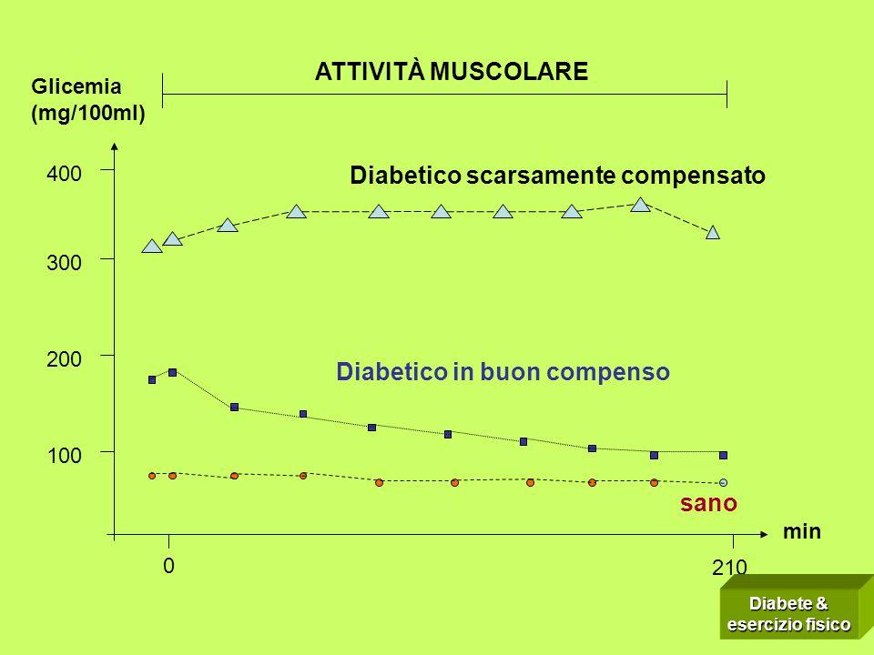 210 400 100 300 200 Glicemia (mg/100ml) min 0 sano Diabetico in buon compenso Diabetico scarsamente compensato ATTIVITÀ MUSCOLARE Diabete & esercizio