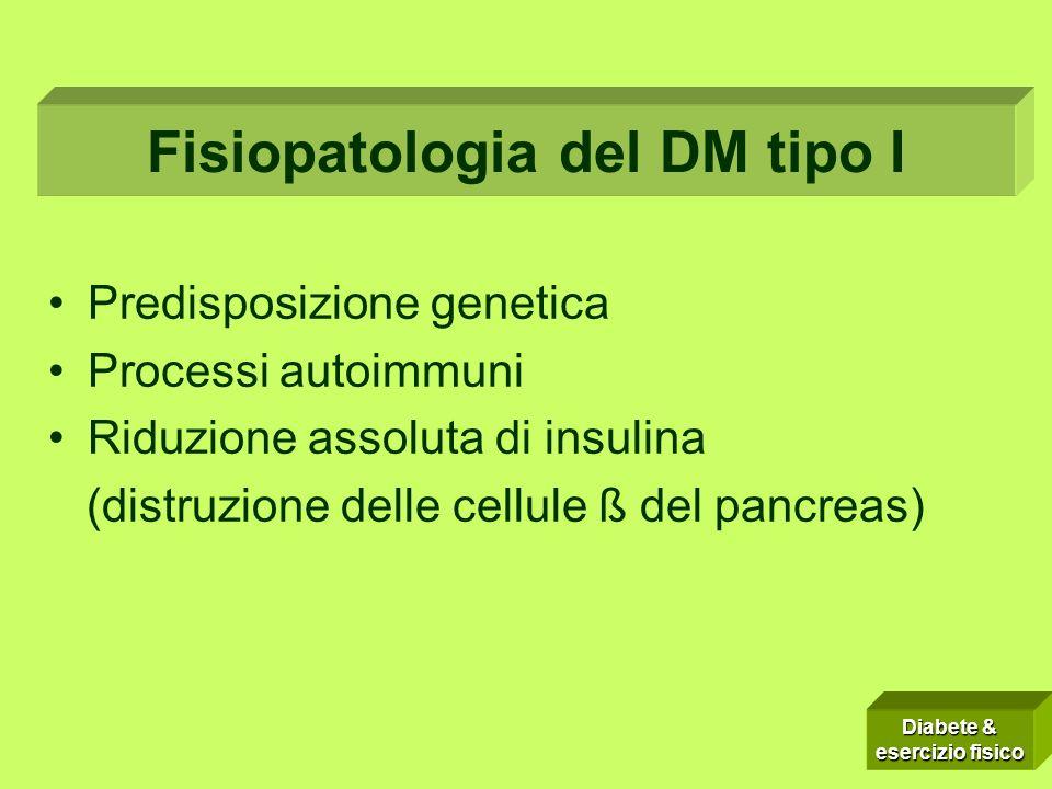 Predisposizione genetica Processi autoimmuni Riduzione assoluta di insulina (distruzione delle cellule ß del pancreas) Fisiopatologia del DM tipo I Diabete & esercizio fisico