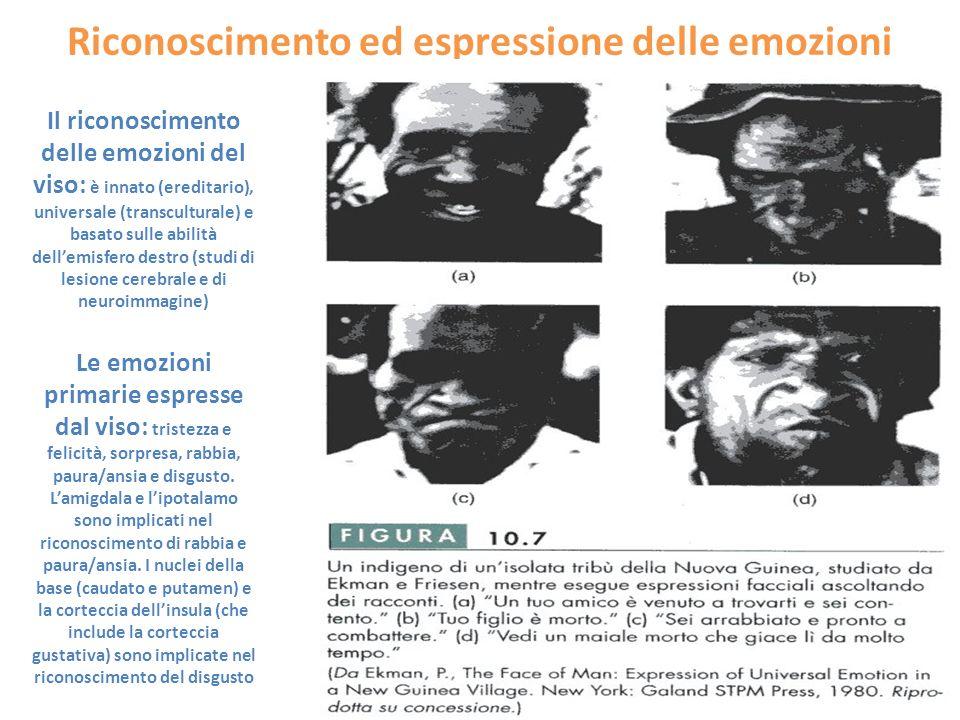 Riconoscimento ed espressione delle emozioni Il riconoscimento delle emozioni del viso: è innato (ereditario), universale (transculturale) e basato su