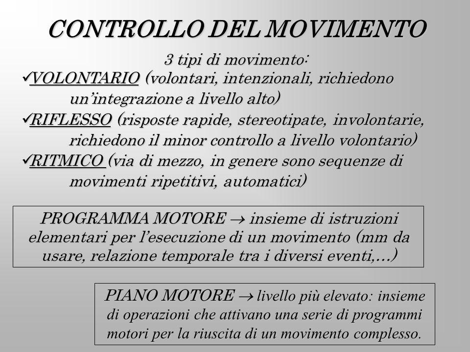 CONTROLLO DEL MOVIMENTO PROGRAMMA MOTORE insieme di istruzioni elementari per lesecuzione di un movimento (mm da usare, relazione temporale tra i dive