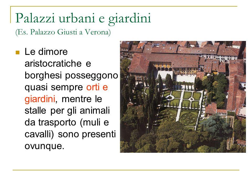 Palazzi urbani e giardini (Es. Palazzo Giusti a Verona) Le dimore aristocratiche e borghesi posseggono quasi sempre orti e giardini, mentre le stalle