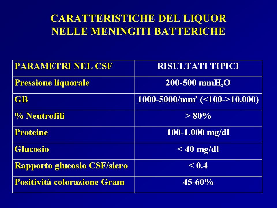 CARATTERISTICHE DEL LIQUOR NELLE MENINGITI BATTERICHE