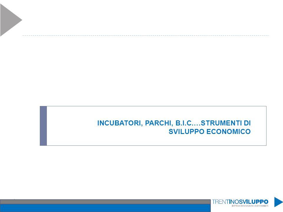 INCUBATORI, PARCHI, B.I.C.…STRUMENTI DI SVILUPPO ECONOMICO