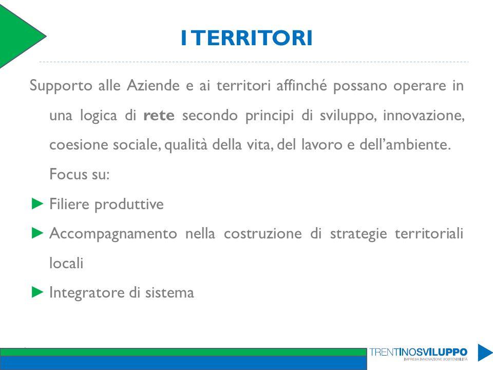 I TERRITORI Supporto alle Aziende e ai territori affinché possano operare in una logica di rete secondo principi di sviluppo, innovazione, coesione so