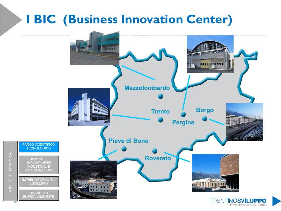 I BIC (Business Innovation Center) PARCO SCIENTIFICO TECNOLOGICO IMPRENDITORIALITA e SVILUPPO DISTRETTO ENERGIA AMBIENTE IMMOBILI, IMPIANTI, AREE INDU