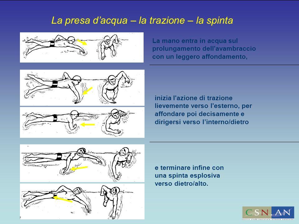 La presa dacqua – la trazione – la spinta La mano entra in acqua sul prolungamento dell'avambraccio con un leggero affondamento, inizia l'azione di tr
