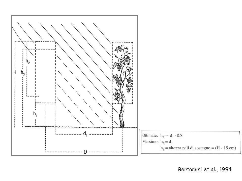 Bertamini et al., 1994