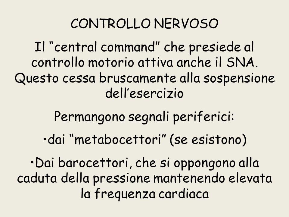 CONTROLLO NERVOSO Il central command che presiede al controllo motorio attiva anche il SNA.