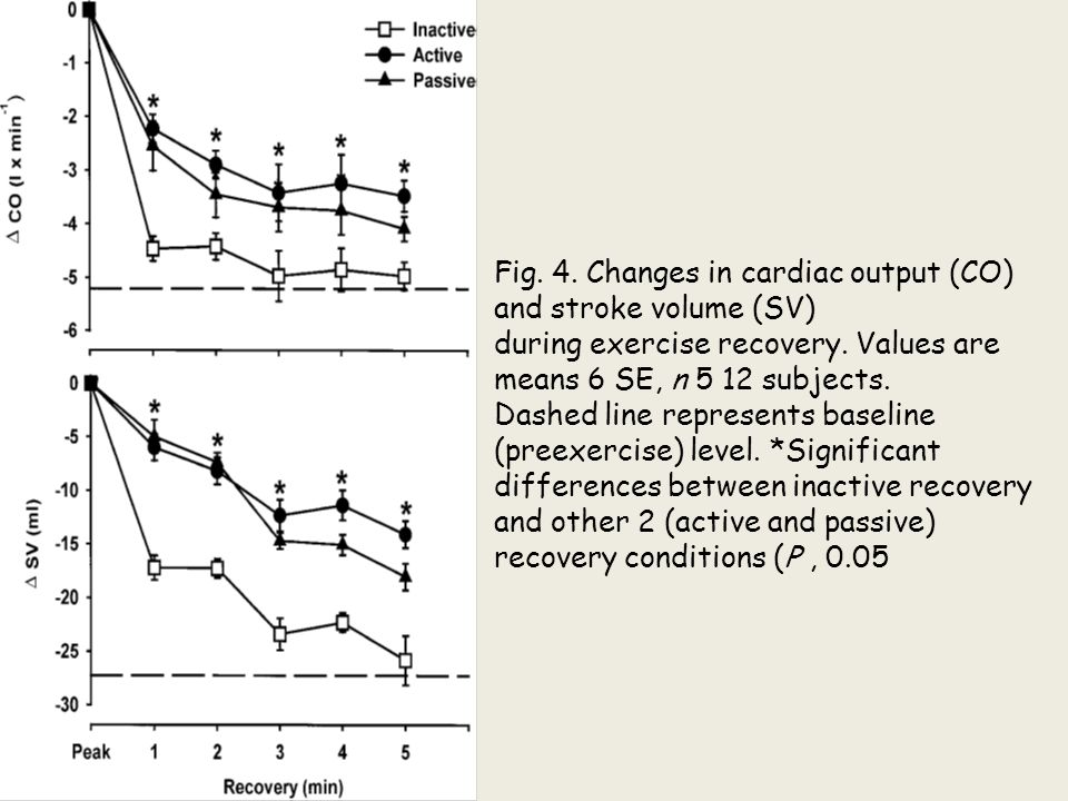 Fig. 4. Changes in cardiac output (CO) and stroke volume (SV) during exercise recovery. Values are means 6 SE, n 5 12 subjects. Dashed line represents