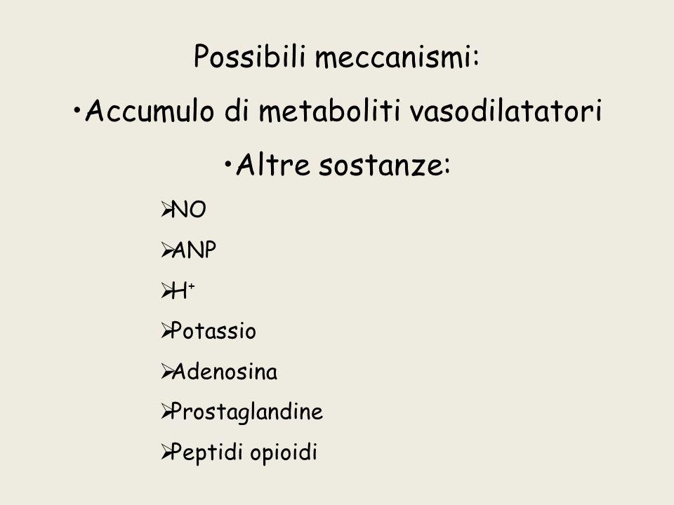 Possibili meccanismi: Accumulo di metaboliti vasodilatatori Altre sostanze: NO ANP H + Potassio Adenosina Prostaglandine Peptidi opioidi
