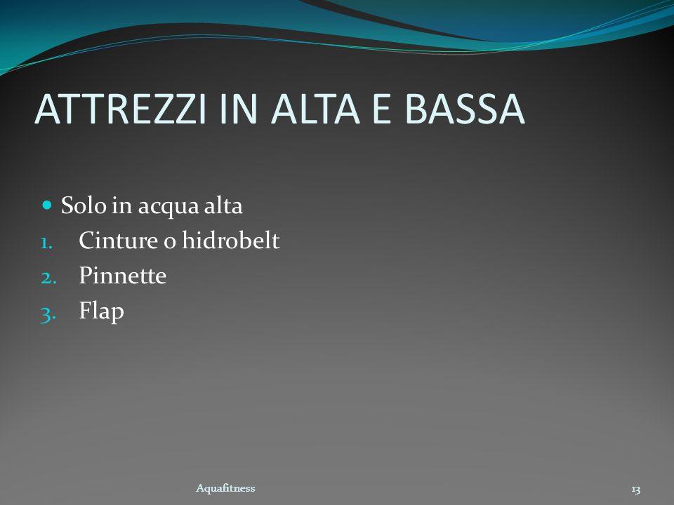 Aquafitness13 ATTREZZI IN ALTA E BASSA Solo in acqua alta 1. Cinture o hidrobelt 2. Pinnette 3. Flap Aquafitness13