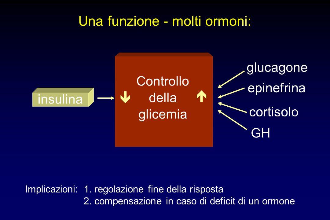Una funzione - molti ormoni: Controllo della glicemia glucagone epinefrina cortisolo GH insulina Implicazioni: 1. regolazione fine della risposta 2. c