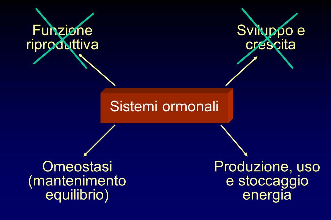 Sistemi ormonali Funzione riproduttiva Sviluppo e crescita Omeostasi (mantenimento equilibrio) Produzione, uso e stoccaggio energia