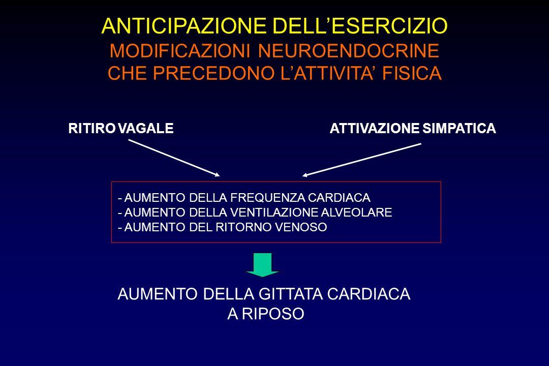 ANTICIPAZIONE DELLESERCIZIO MODIFICAZIONI NEUROENDOCRINE CHE PRECEDONO LATTIVITA FISICA RITIRO VAGALEATTIVAZIONE SIMPATICA - AUMENTO DELLA FREQUENZA CARDIACA - AUMENTO DELLA VENTILAZIONE ALVEOLARE - AUMENTO DEL RITORNO VENOSO AUMENTO DELLA GITTATA CARDIACA A RIPOSO
