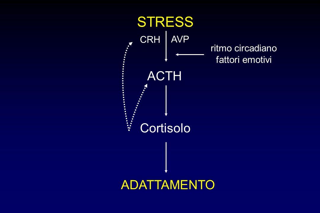 STRESS ACTH Cortisolo ADATTAMENTO CRH ritmo circadiano fattori emotivi AVP
