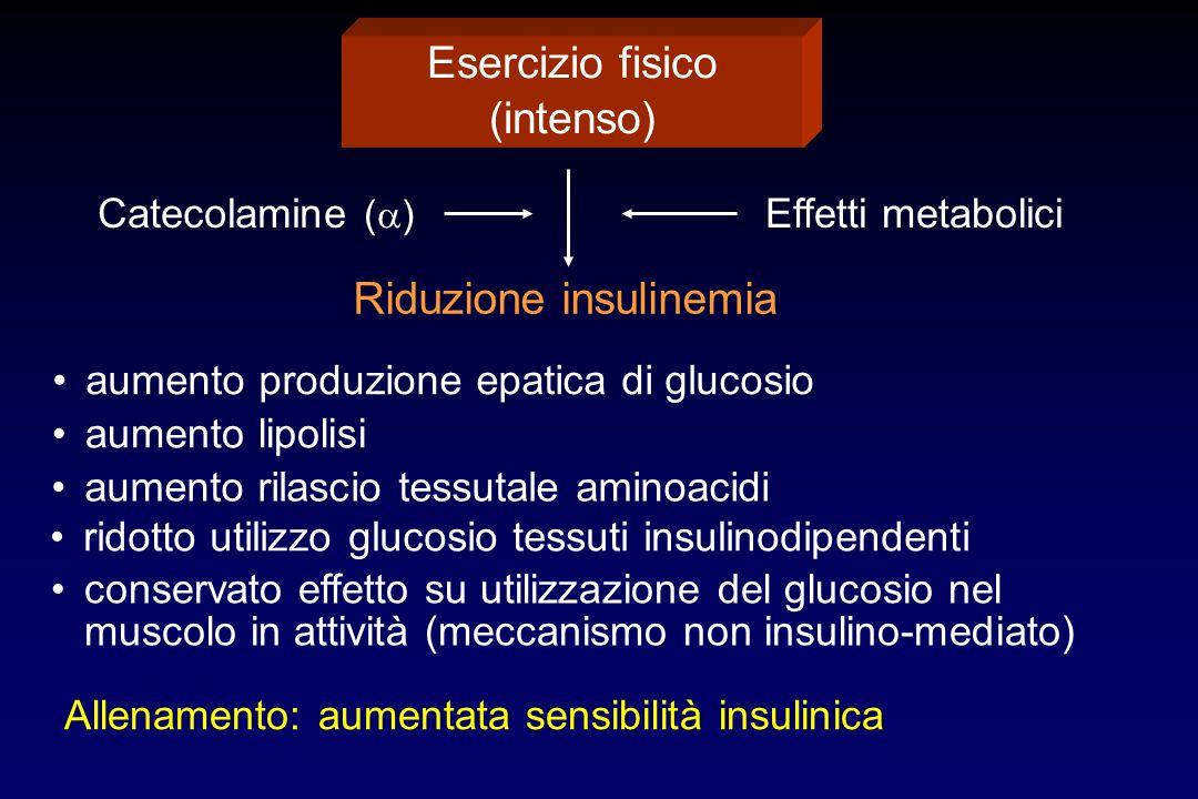 Esercizio fisico (intenso) Catecolamine ( ) Effetti metabolici Riduzione insulinemia Allenamento: aumentata sensibilità insulinica conservato effetto su utilizzazione del glucosio nel muscolo in attività (meccanismo non insulino-mediato) aumento produzione epatica di glucosio aumento lipolisi aumento rilascio tessutale aminoacidi ridotto utilizzo glucosio tessuti insulinodipendenti