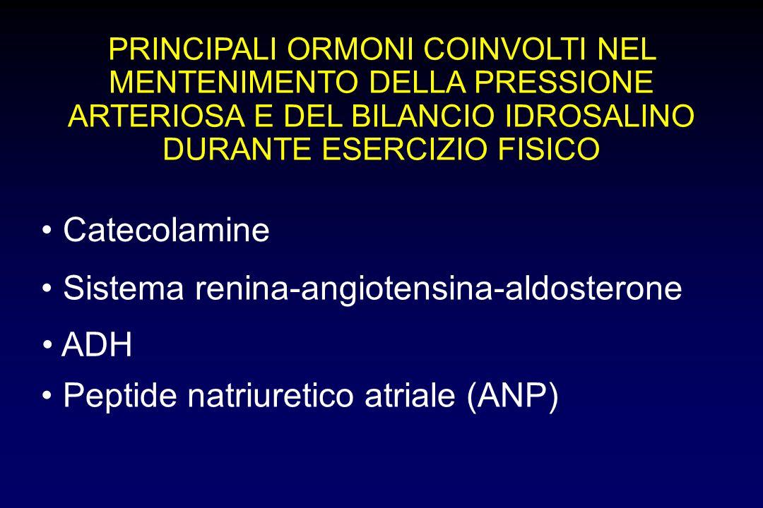 PRINCIPALI ORMONI COINVOLTI NEL MENTENIMENTO DELLA PRESSIONE ARTERIOSA E DEL BILANCIO IDROSALINO DURANTE ESERCIZIO FISICO Catecolamine Sistema renina-angiotensina-aldosterone Peptide natriuretico atriale (ANP) ADH